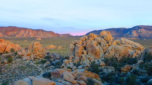 joshua-tree-hidden-valley-sunset