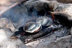 trout-tacos-fire