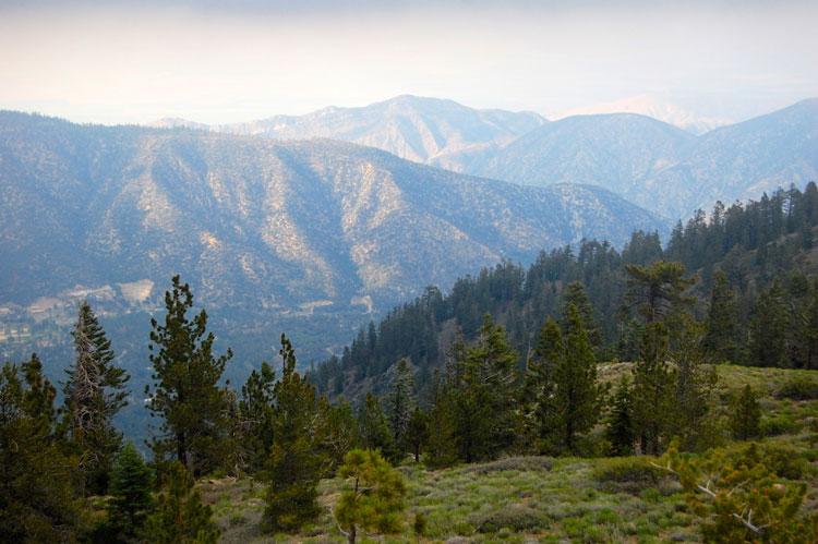 pine-mtn-club-sawmill-peak-view