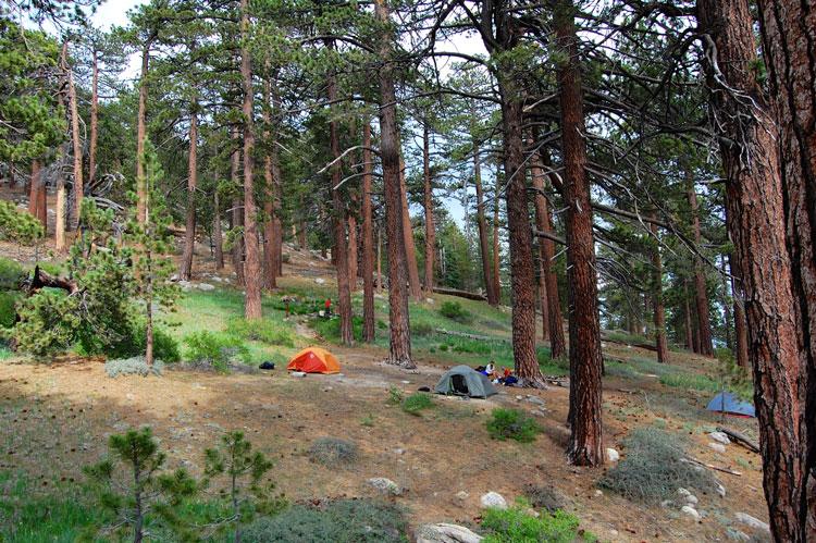 sheep-camp-backcountry-mt-pinos